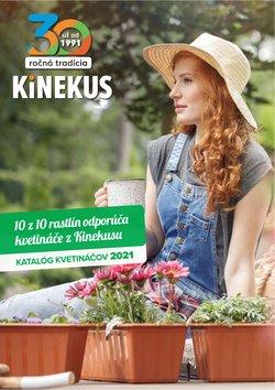 Katalóg Kinekus ( Viac ako mesiac)