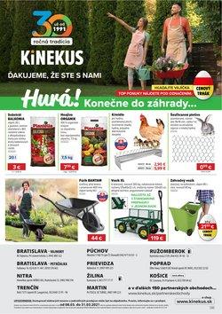 Katalóg Kinekus ( Neplatný)