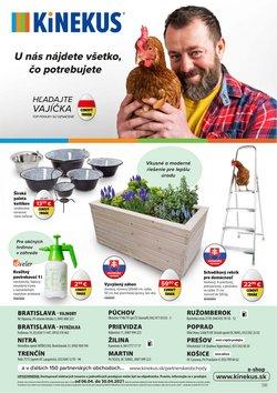 Dom a Záhrada akcie v katalógu Kinekus v Ružomberok ( 17 dní zostáva )