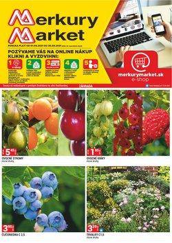 Katalóg Merkury Market ( 20 dní zostáva)